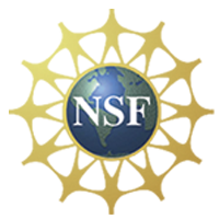 Logo: National Science Foundation